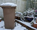 Brown bin covered in snow